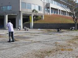 aoya2011.JPGのサムネール画像